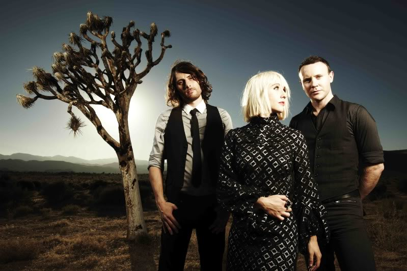 joy-formidable-band