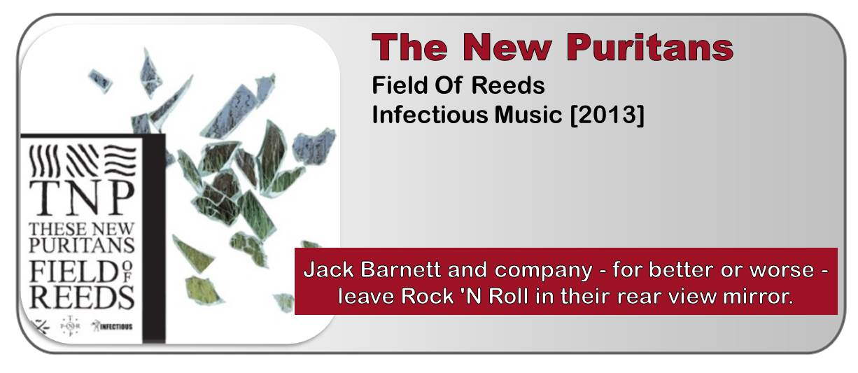 These New Puritans: Field Of Reeds [Album Review]