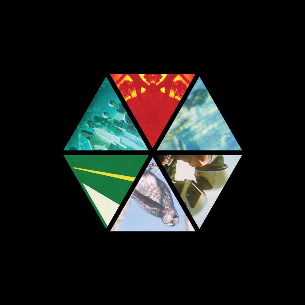 Repress Hexagon Final