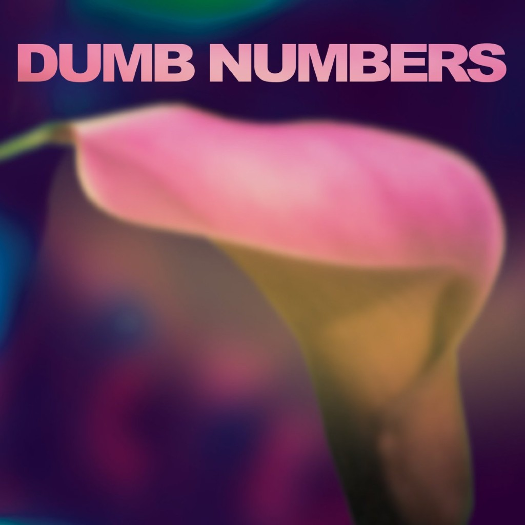 dumb-numbers-cover