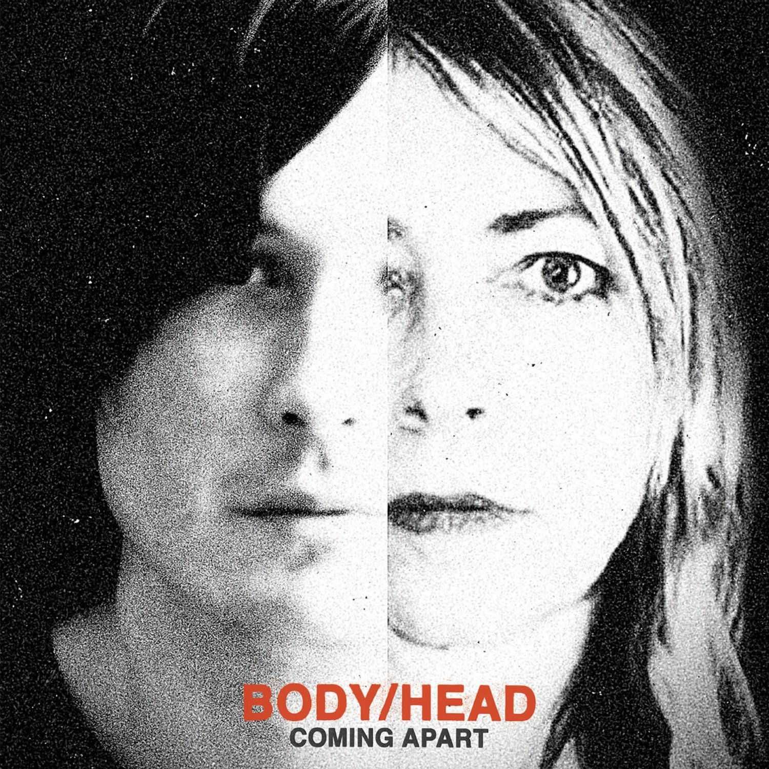 body-head-coming-apart