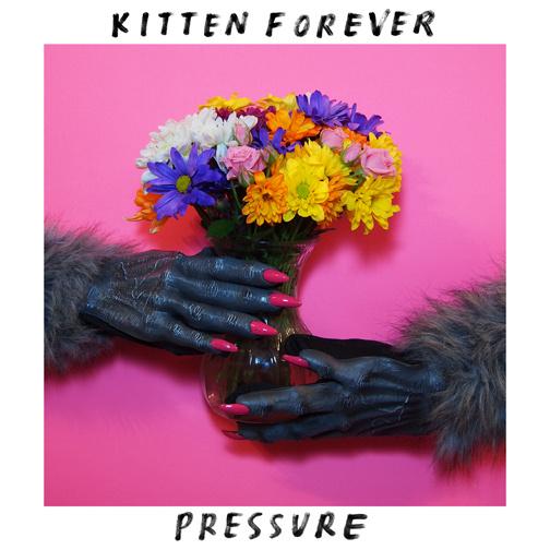 kitten-forever-pressure-cover