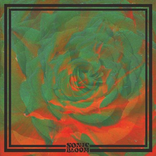 night-beats-sonic-bloom