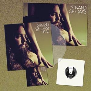 strands-of-oak