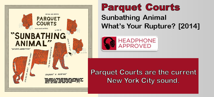 Parquet Courts Sunbathing Animal Album Review The
