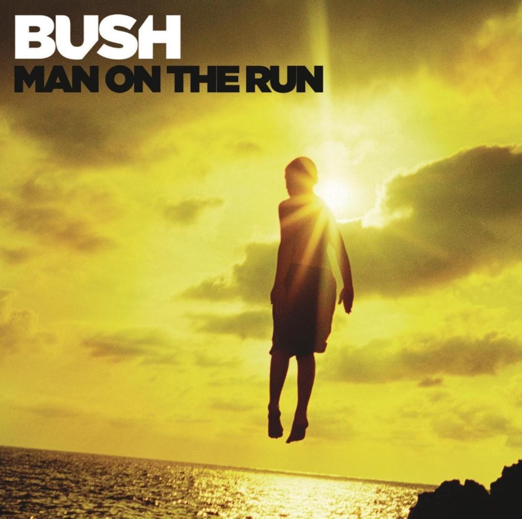 bush-man-on-the-run