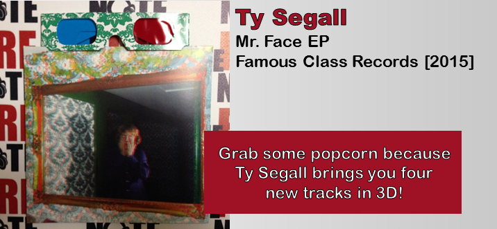 ty segall face