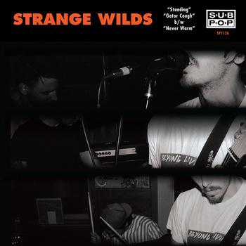 strange-wilds