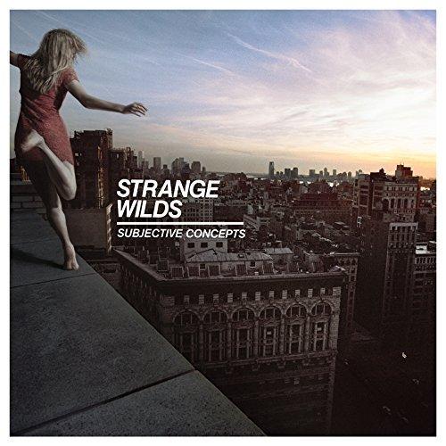 strange-wilds-subjective-concepts