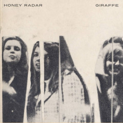 Honey Radar: Giraffe EP [7-Inch Review]