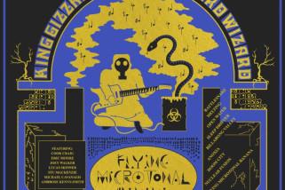 King Gizzard & The Lizard Wizard: Flying Microtonal Banana [Album Review]