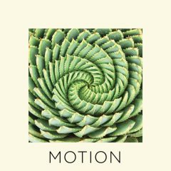 """The Friday Fire Track: Lords Of Sealand – """"Motion"""""""