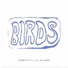 BIRDS: Everything All At Once [Album Review]