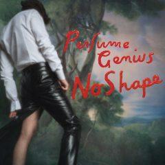 Perfume Genius: No Shape [Album Review]