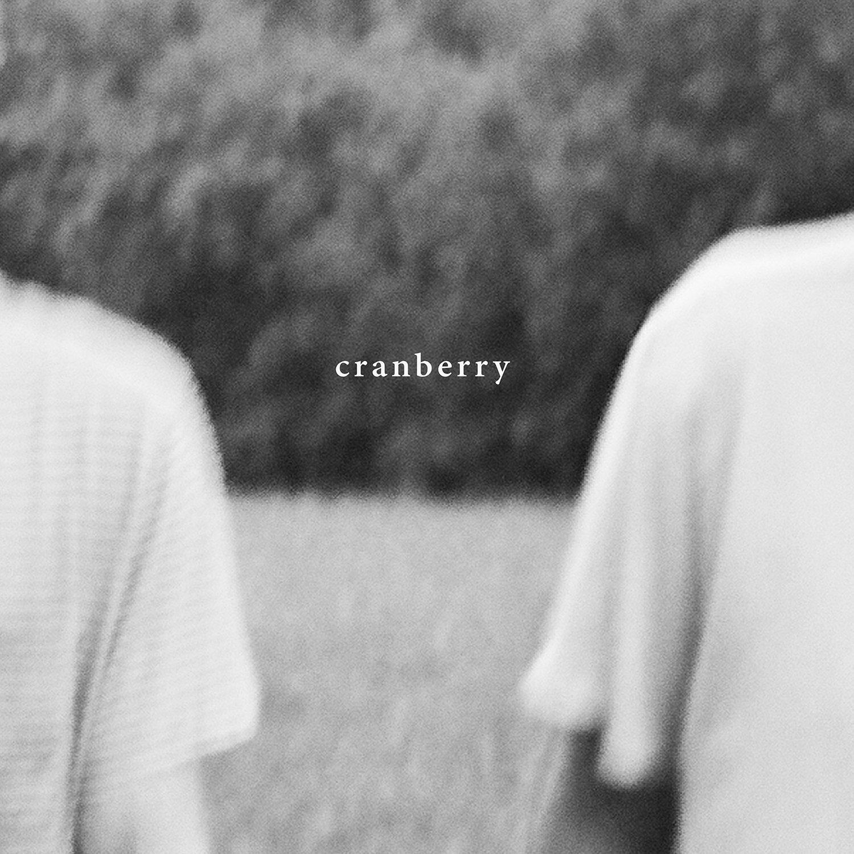 Hovvdy: Cranberry [Album Review]