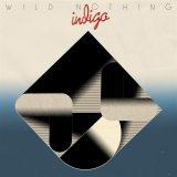 Wild Nothing: Indigo [Album Review]