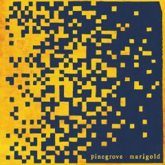Pinegrove: Marigold [Album Review]