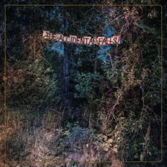 Eyelids: The Accidental Falls [Album Review]