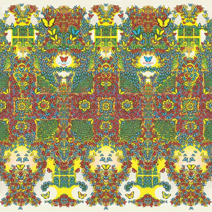 King Gizzard & The Lizard Wizard: Butterfly 3000 [Album Review]
